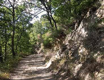 escursioni montefiore conca trekking