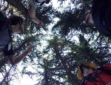 trekking montefiore conca guide ambientali